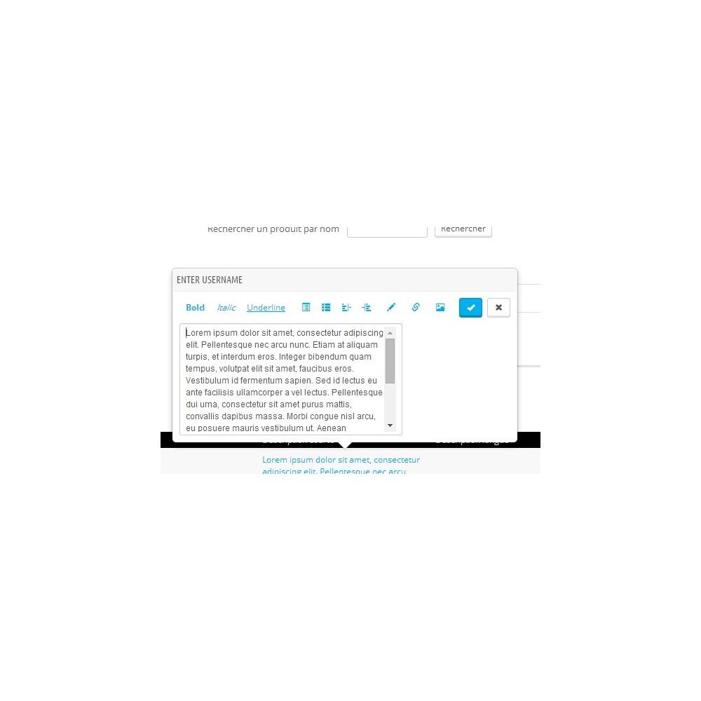 module - Edition rapide & Edition de masse - Fastmanager - administration en masse de vos produits - 13