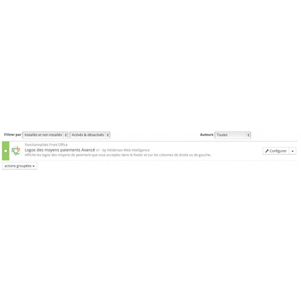 module - Personnalisation de Page - Logos des moyens paiements Avancé - 2