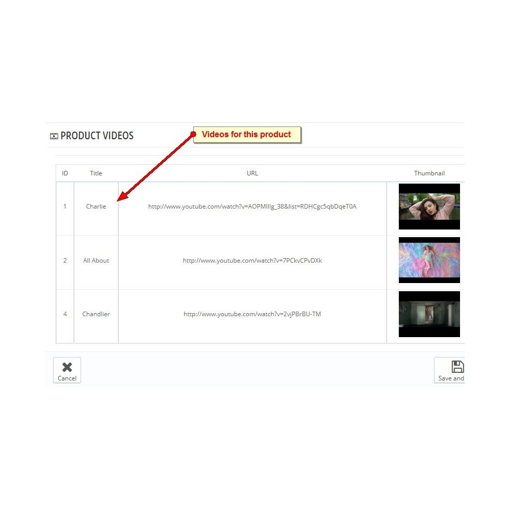 module - Wideo & Muzyka - Youtube Product Videos - 6