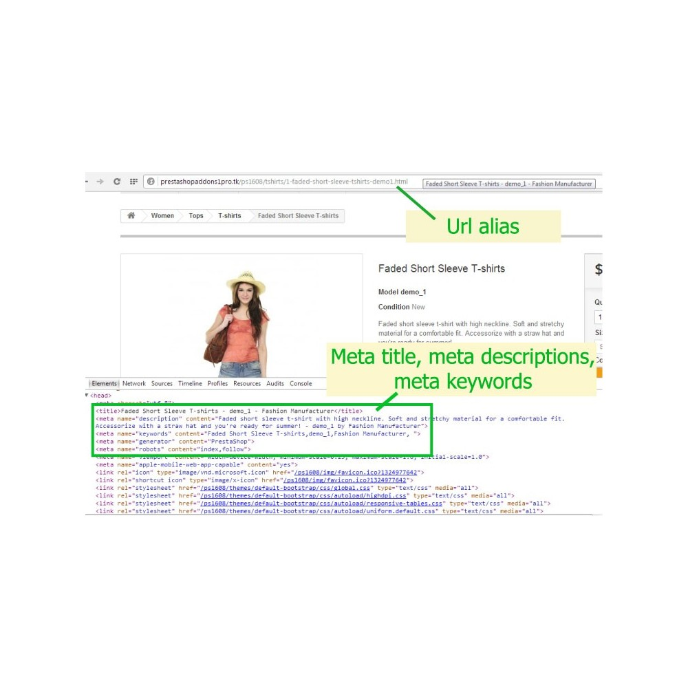 module - SEO (Posicionamiento en buscadores) - [SEO Ultimate] Advanced URL, META Tags And Social - 2