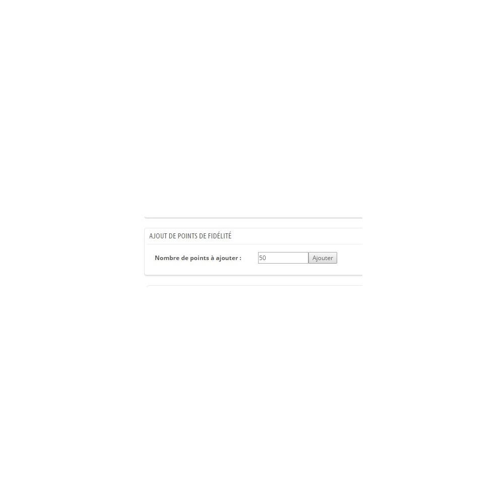 module - Fidélisation & Parrainage - Ajout manuel de points de fidélité - 2