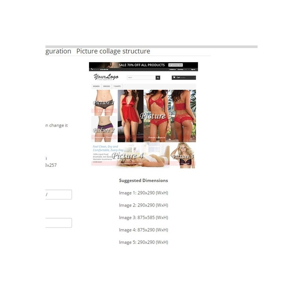 module - Personalizacja strony - Responsive Homepage Layout 3 - Lingerie - 4