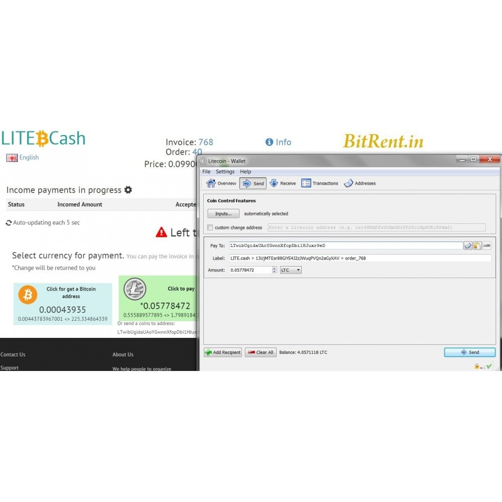 module - Other Payment Methods - Bitcoin and crypto-currencies by LITE.cash gateway - 3