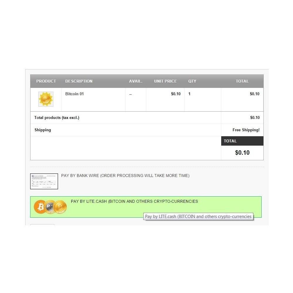 module - Альтернативных способов оплаты - Биткоин и криптовалюты через LITE.cash - 1
