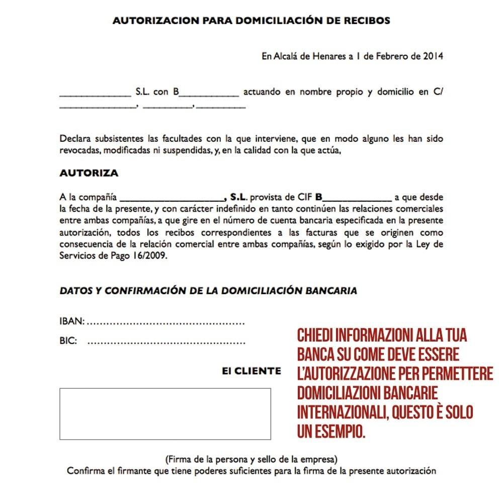 module - Pagamento con Bonifico - Addebito diretto (bonifico bancario) internazionale - 5