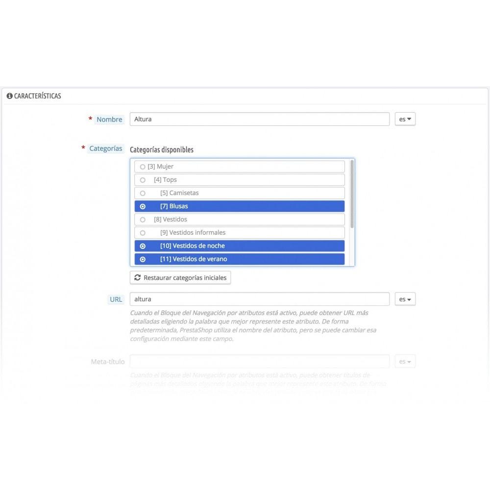 module - Herramientas Administrativas - Características en categorías - 2