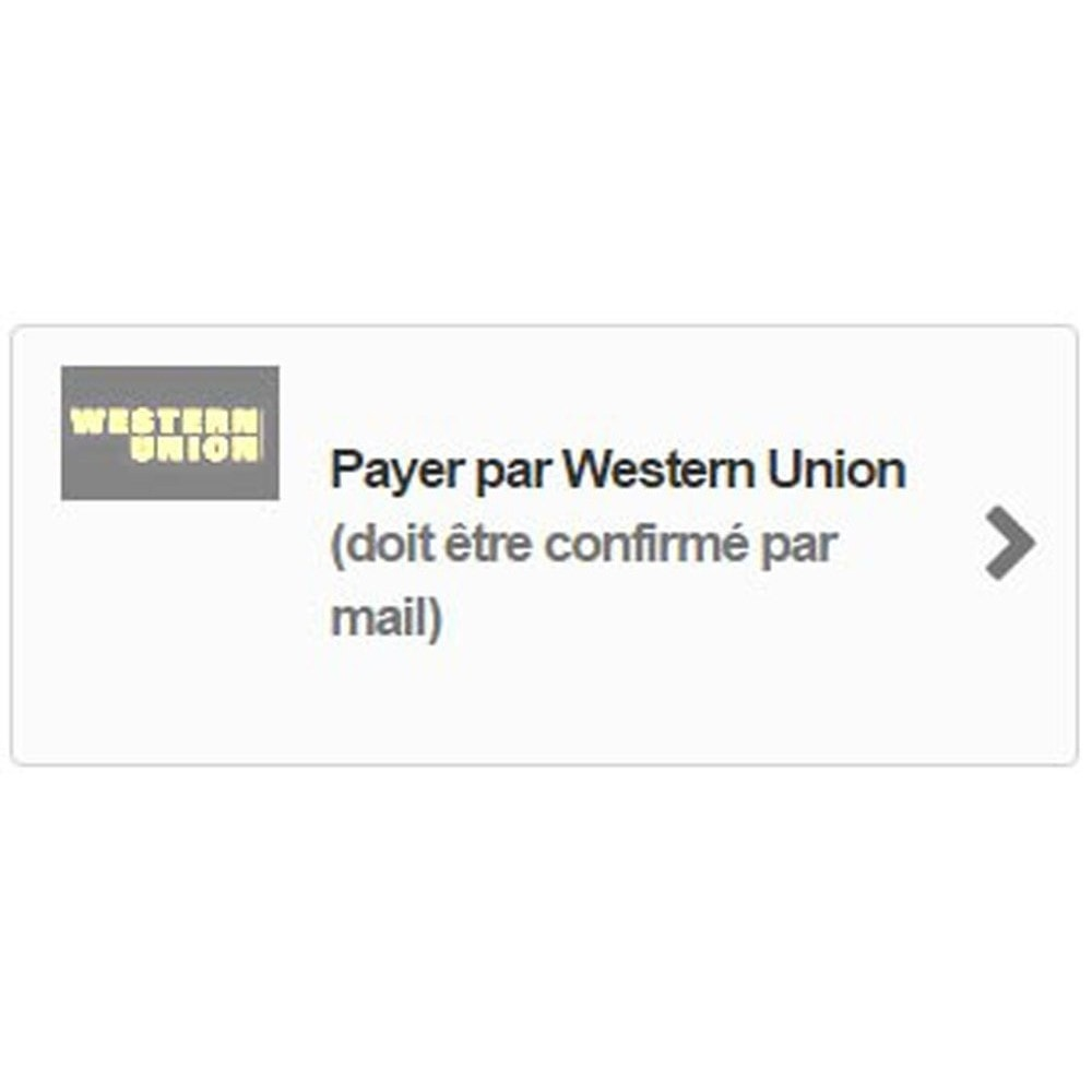 module - Autres moyens de paiement - Paiement Western Union - 2