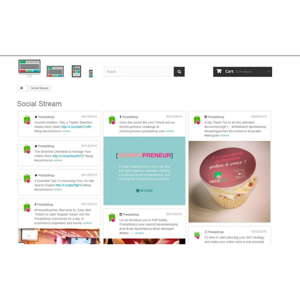 module - Виджеты для социальных сетей - Presta Social Stream - 3
