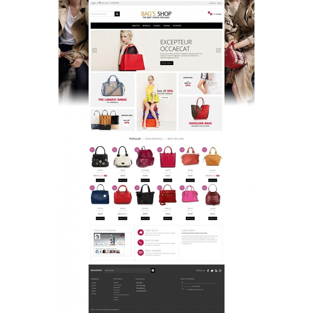 theme - Schmuck & Accesoires - Bags shop Multipurpose HTML5 - 4