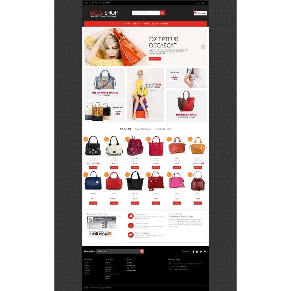theme - Schmuck & Accesoires - Bags shop Multipurpose HTML5 - 7