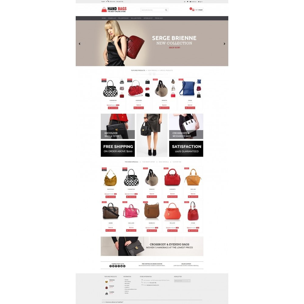 theme - Jewelry & Accessories - Hand Bags Multipurpose HTML5 - 3
