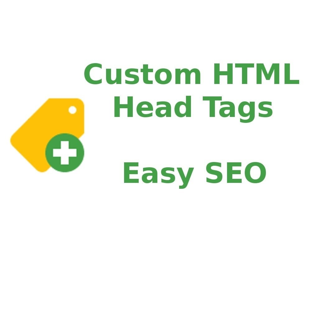 module - SEO - Custom HTML Head Tags - 1