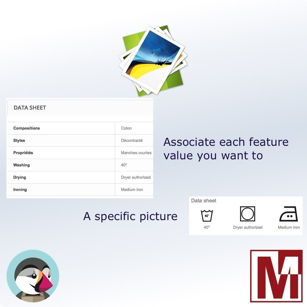 module - Emblemas e logotipos - Associate images with the characteristics - 1