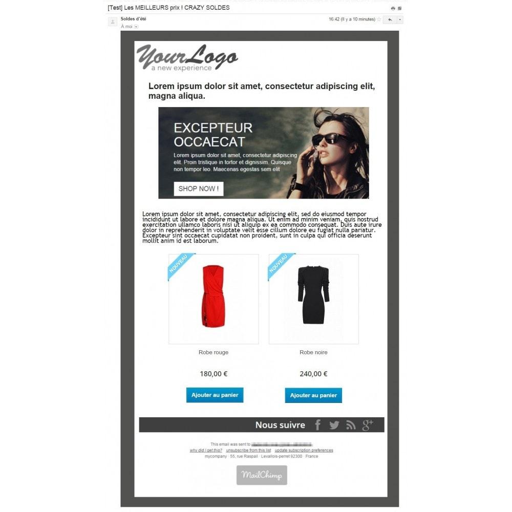 pack - Les offres du moment - Faites des économies ! - Marketing (Pack) : Relance de paniers abandonnés + Mailchimp Newsletter - 2