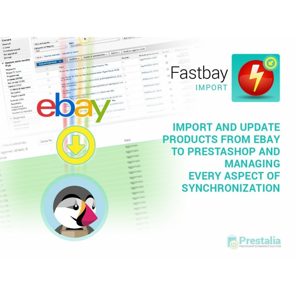 module - Import & Export de données - Import eBay - creates products from eBay listings - 1