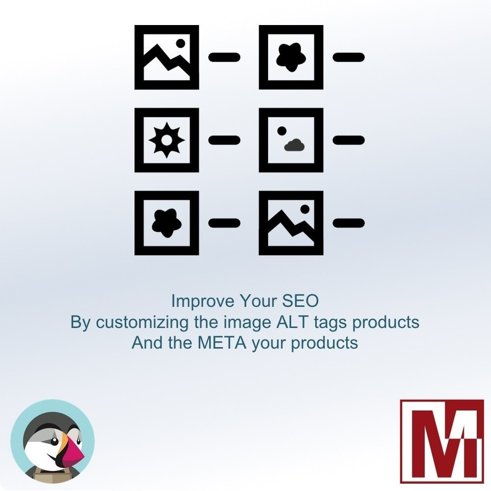 module - SEO (natural Search Engine Optimization) - Manage the ALT tag of your images and meta products - 1