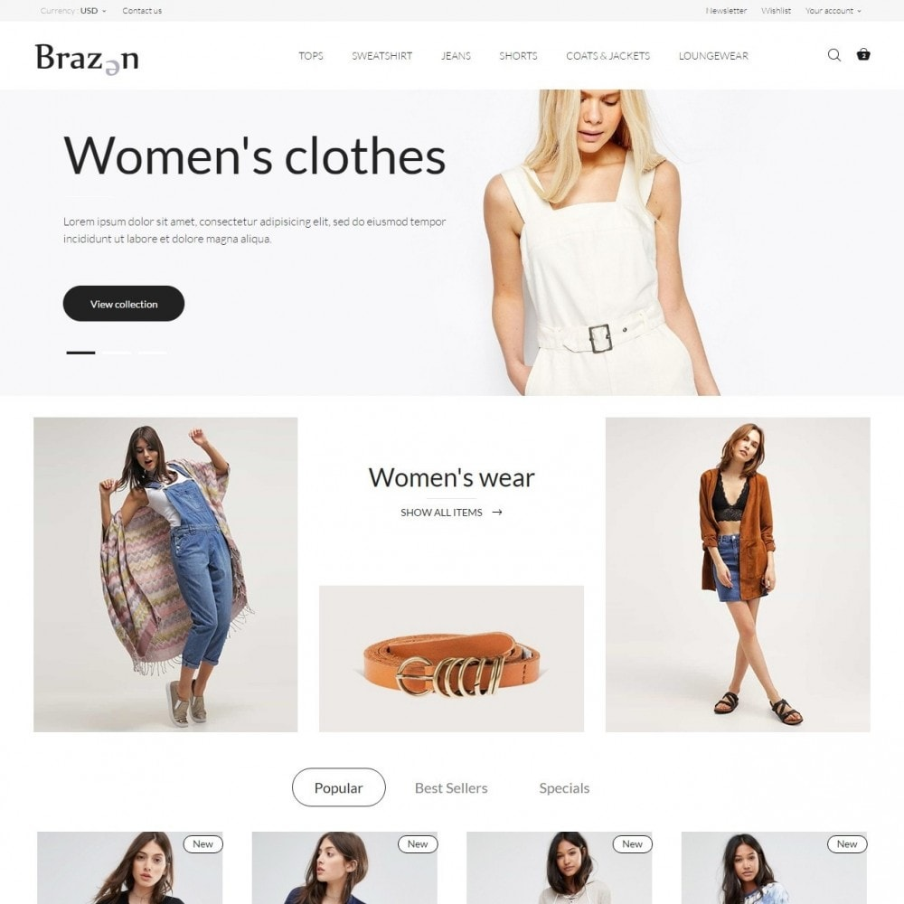 Brazen Fashion Store