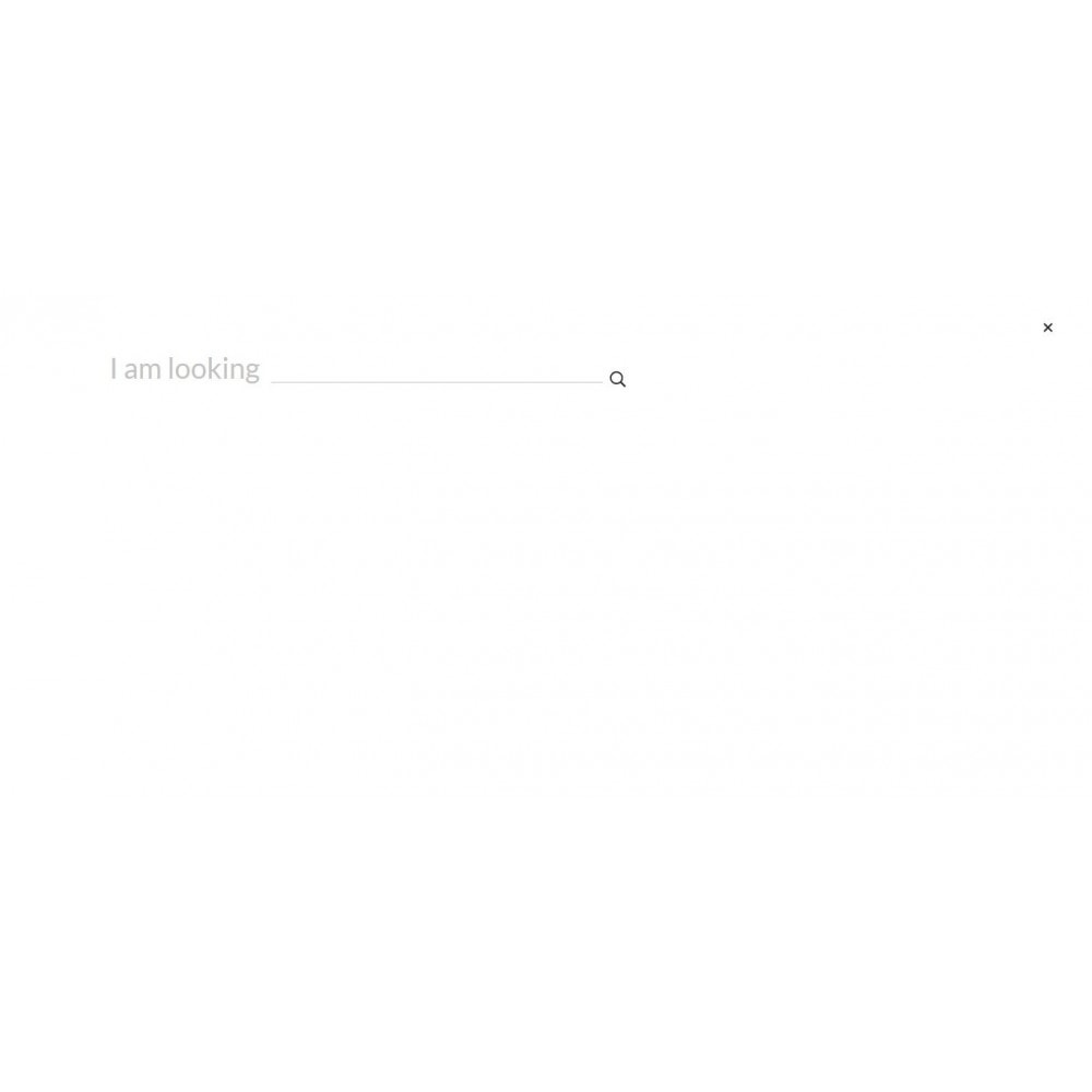 theme - Lingerie & Volwassenen - TakeThis SexShop - 9