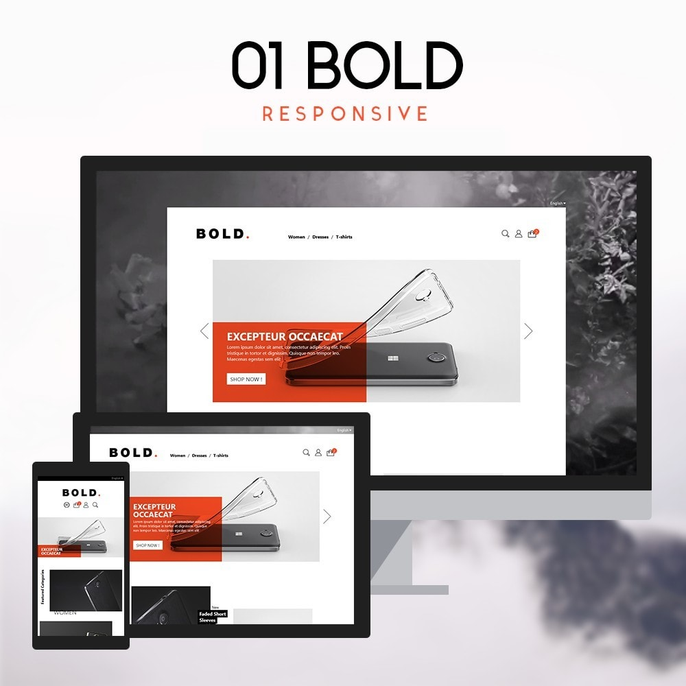 01 BOLD