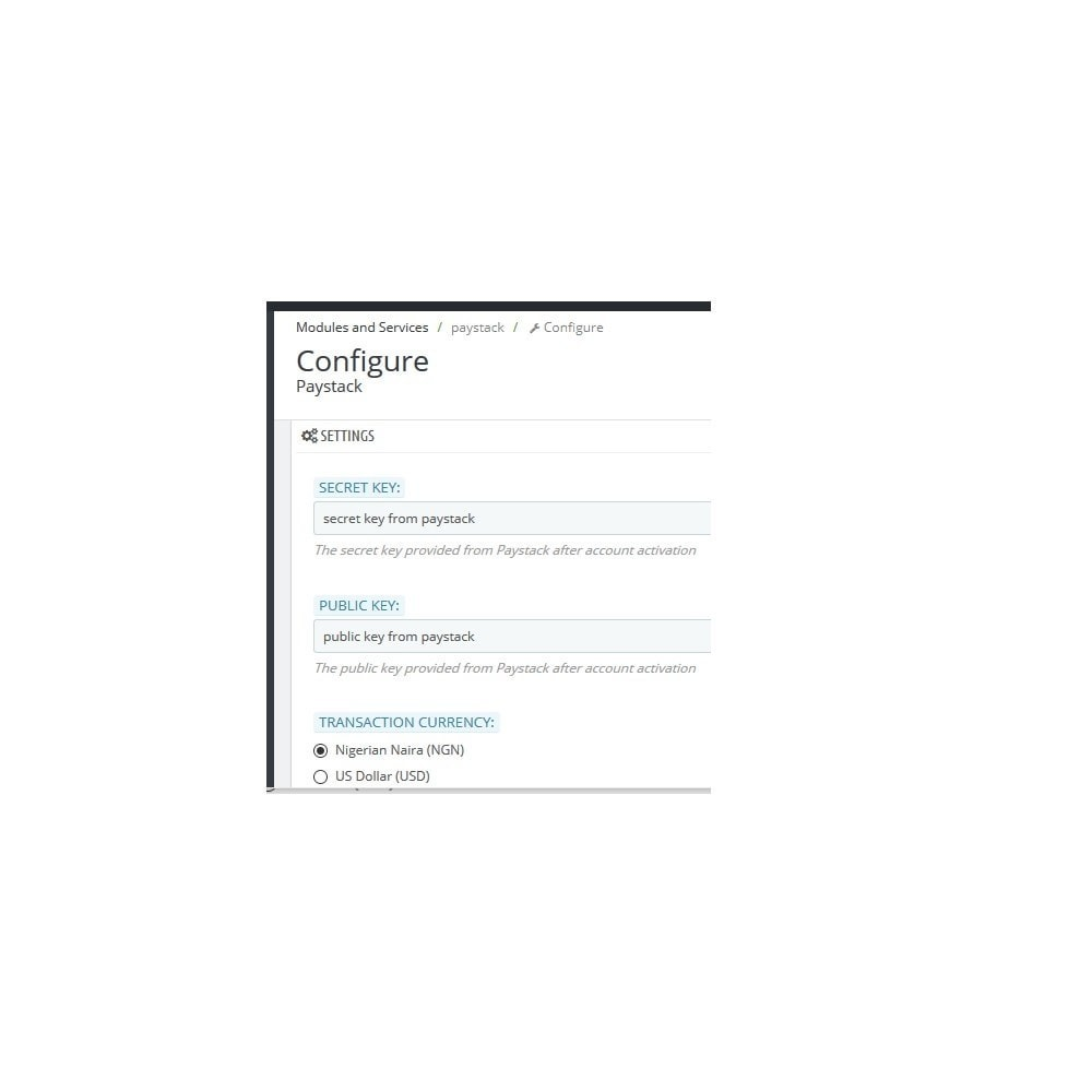 module - Pagamento con Carta di Credito o Wallet - Paystack - 2