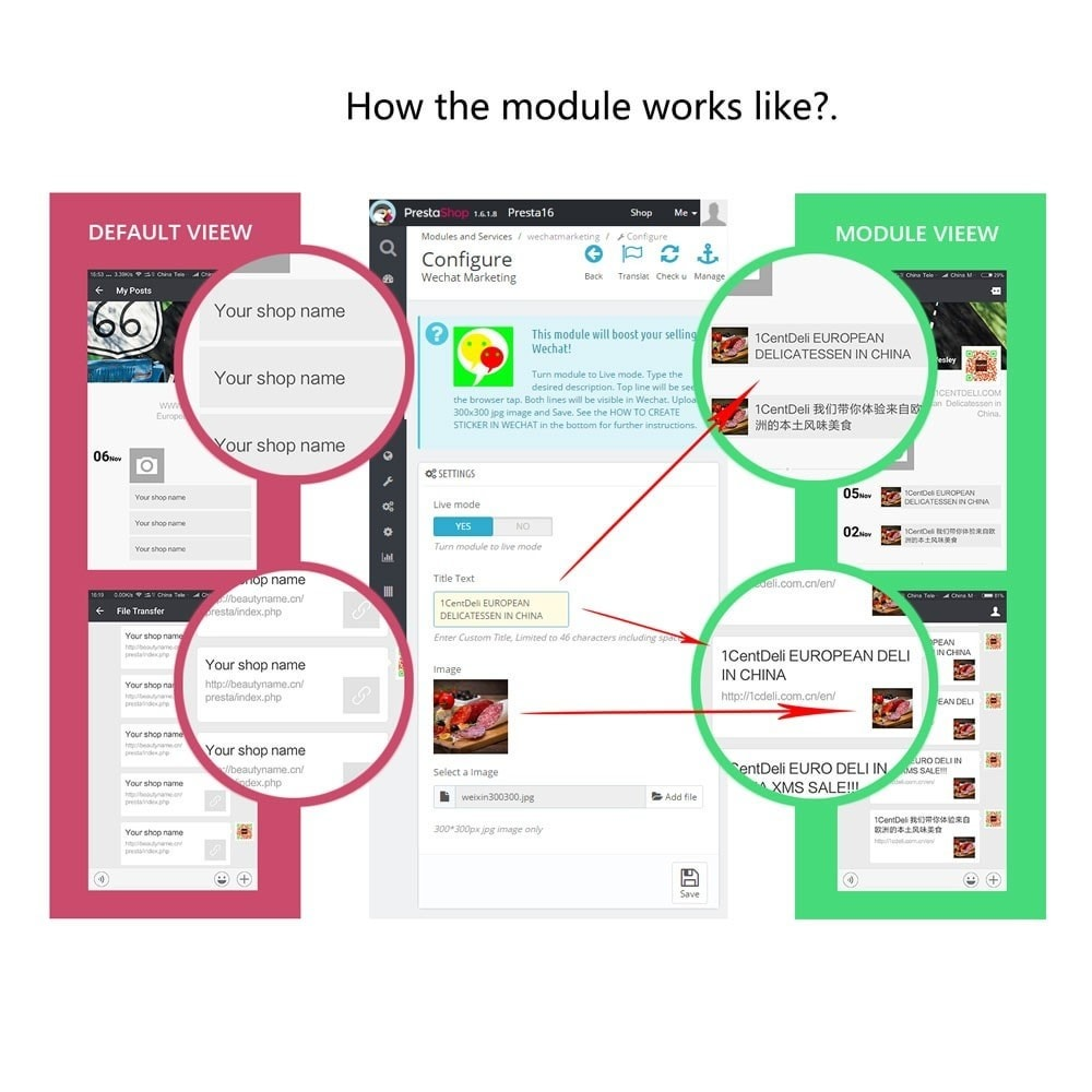 module - Prodotti sui Facebook & Social Network - Wechat Marketing - 2