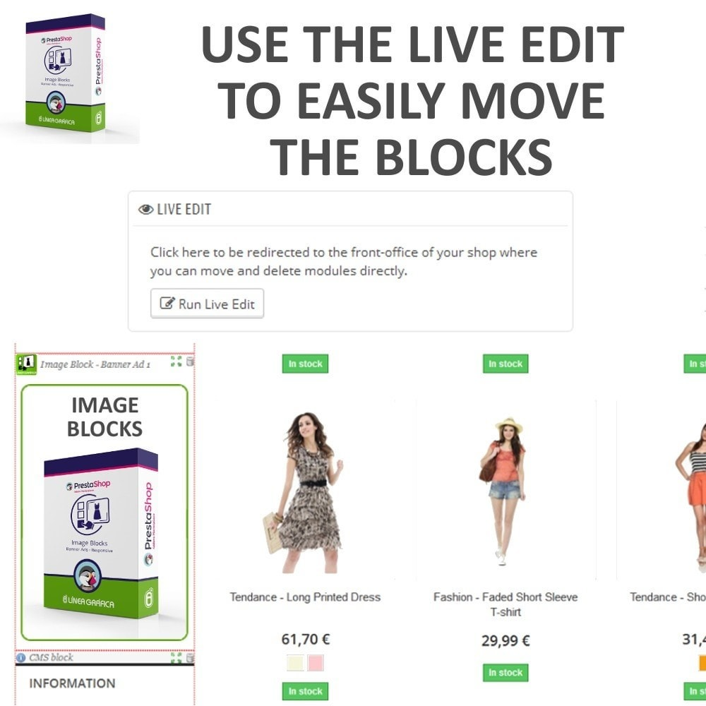module - Blocks, Tabs & Banners - Image Blocks - Banner Ads - 6