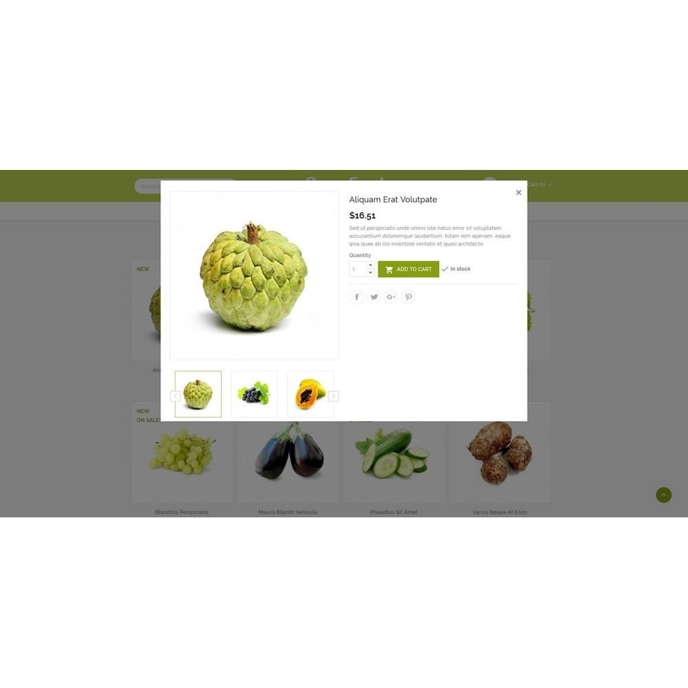 theme - Alimentos & Restaurantes - Green Food Store - 9