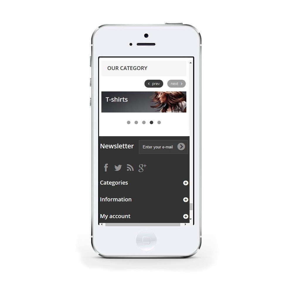 module - Sliders & Galeries - Responsive Carousel with Categories - 4