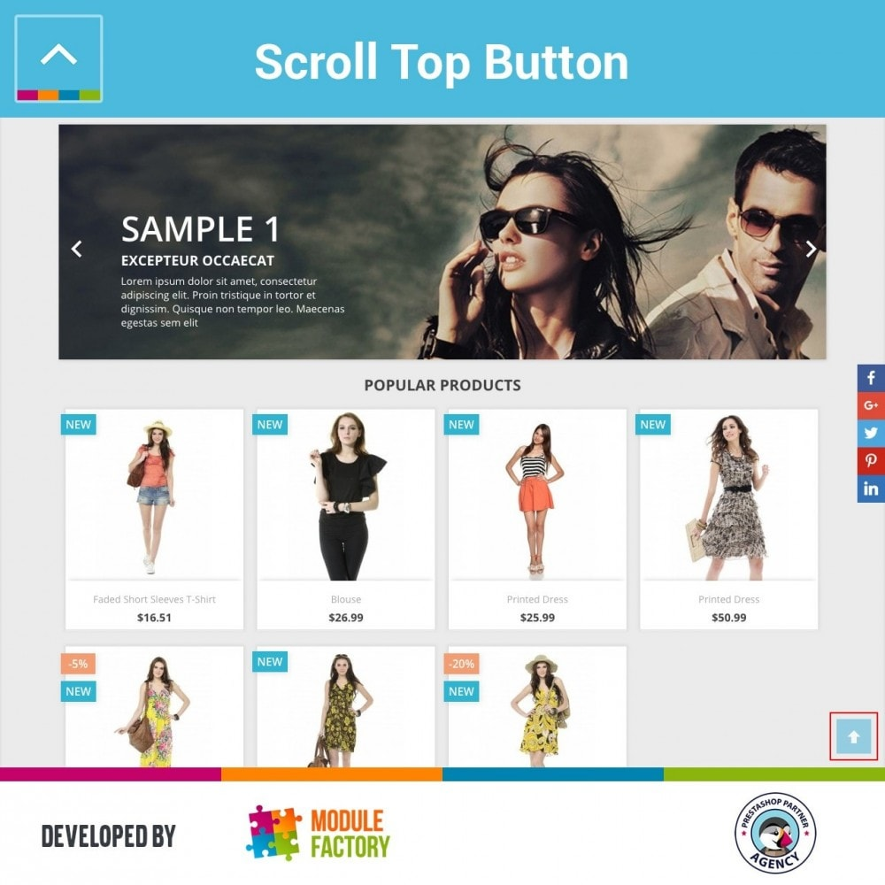 module - Tool di navigazione - Scroll Top Button - 1