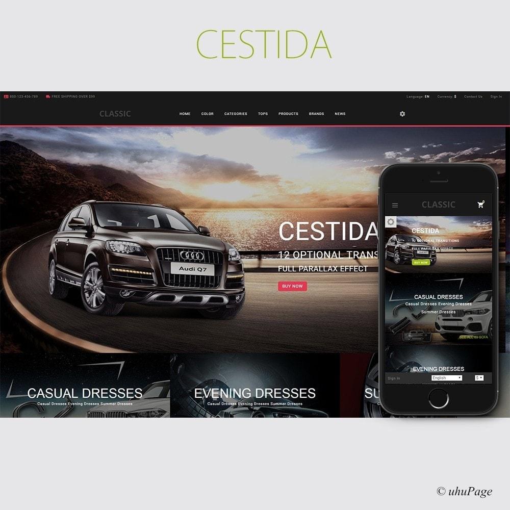 Cestida Cars Store