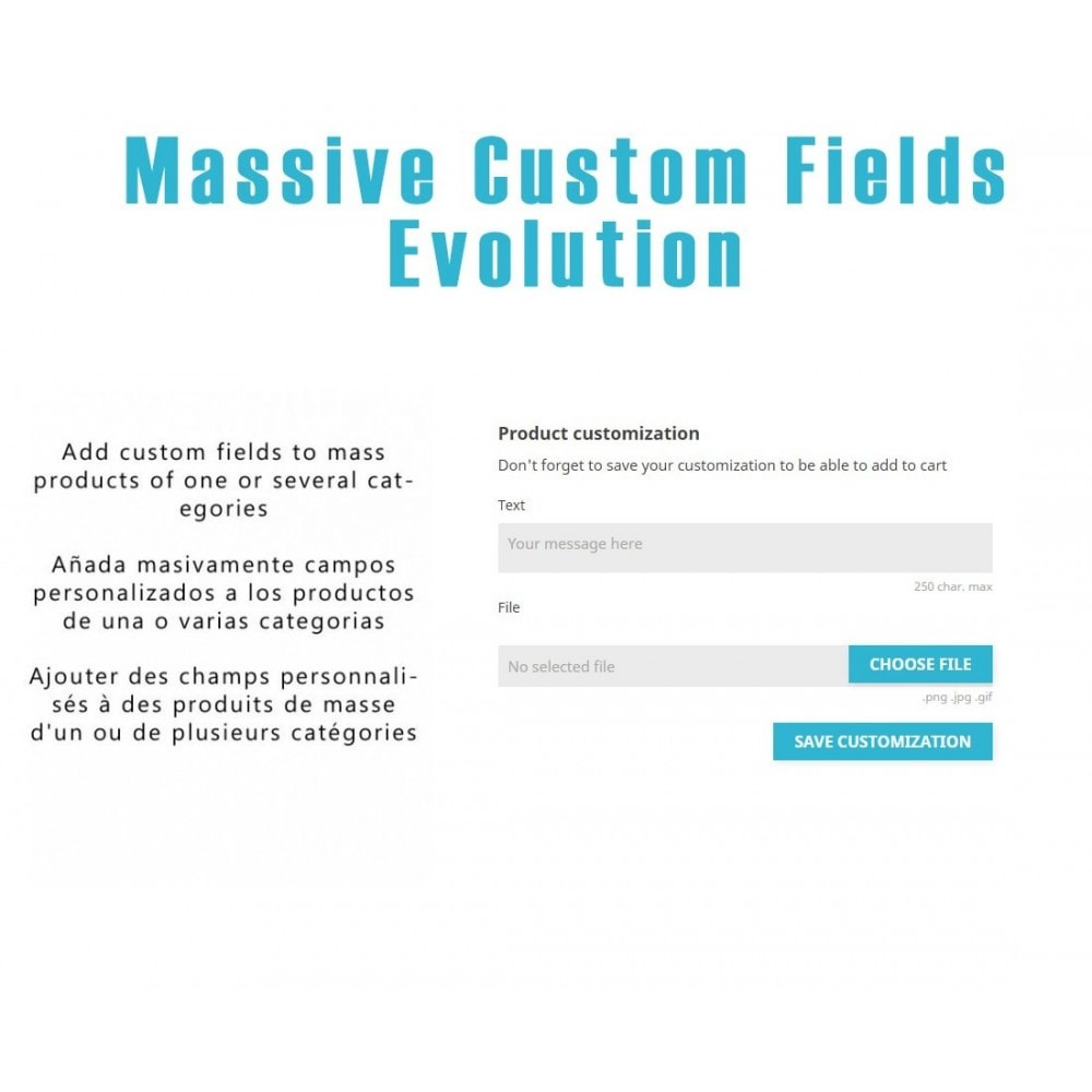module - Bundels & Personalisierung - Massive Custom Fields Evolution - 1