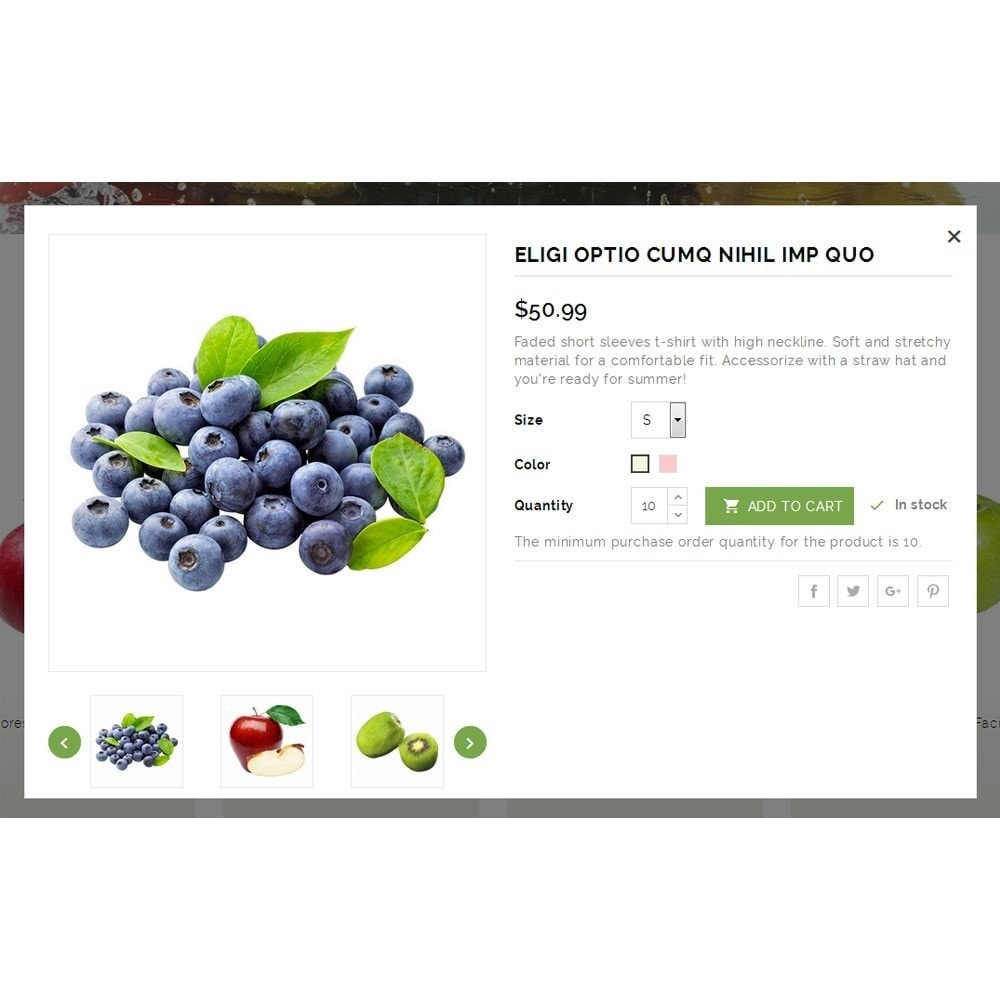 theme - Продовольствие и рестораны - Natural Fruit Store - 6