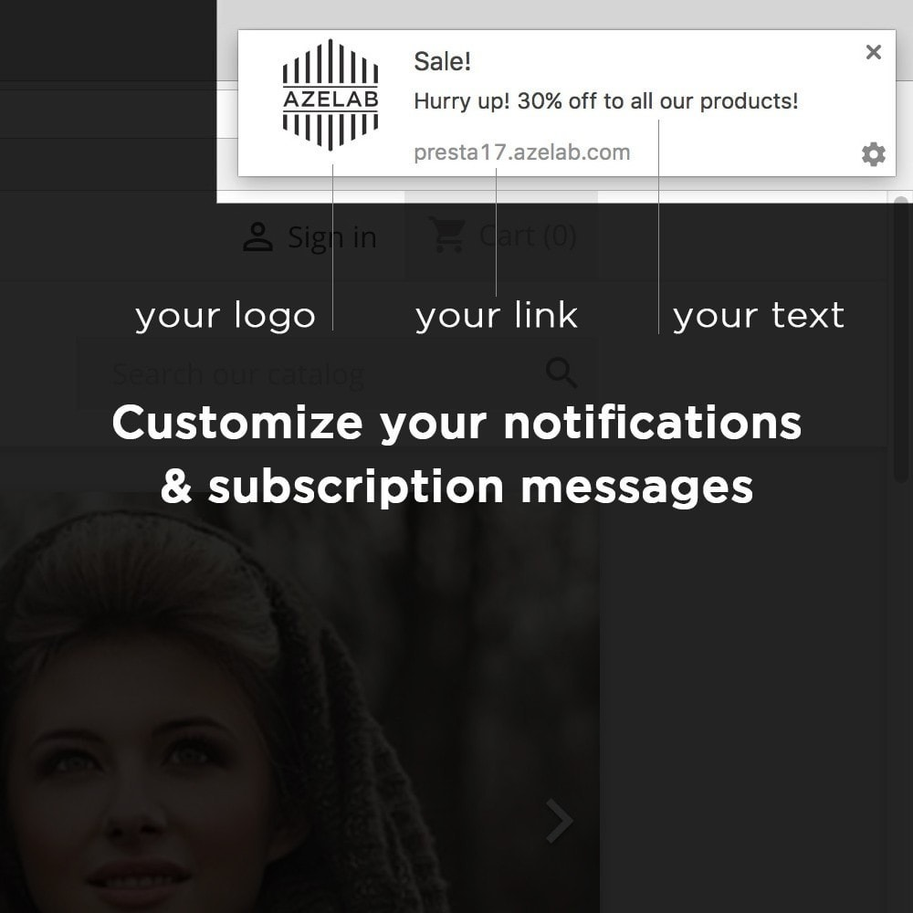 module - Emails & Notificaties - OneSignal - Browser Push Notifications + Cart Reminder - 3