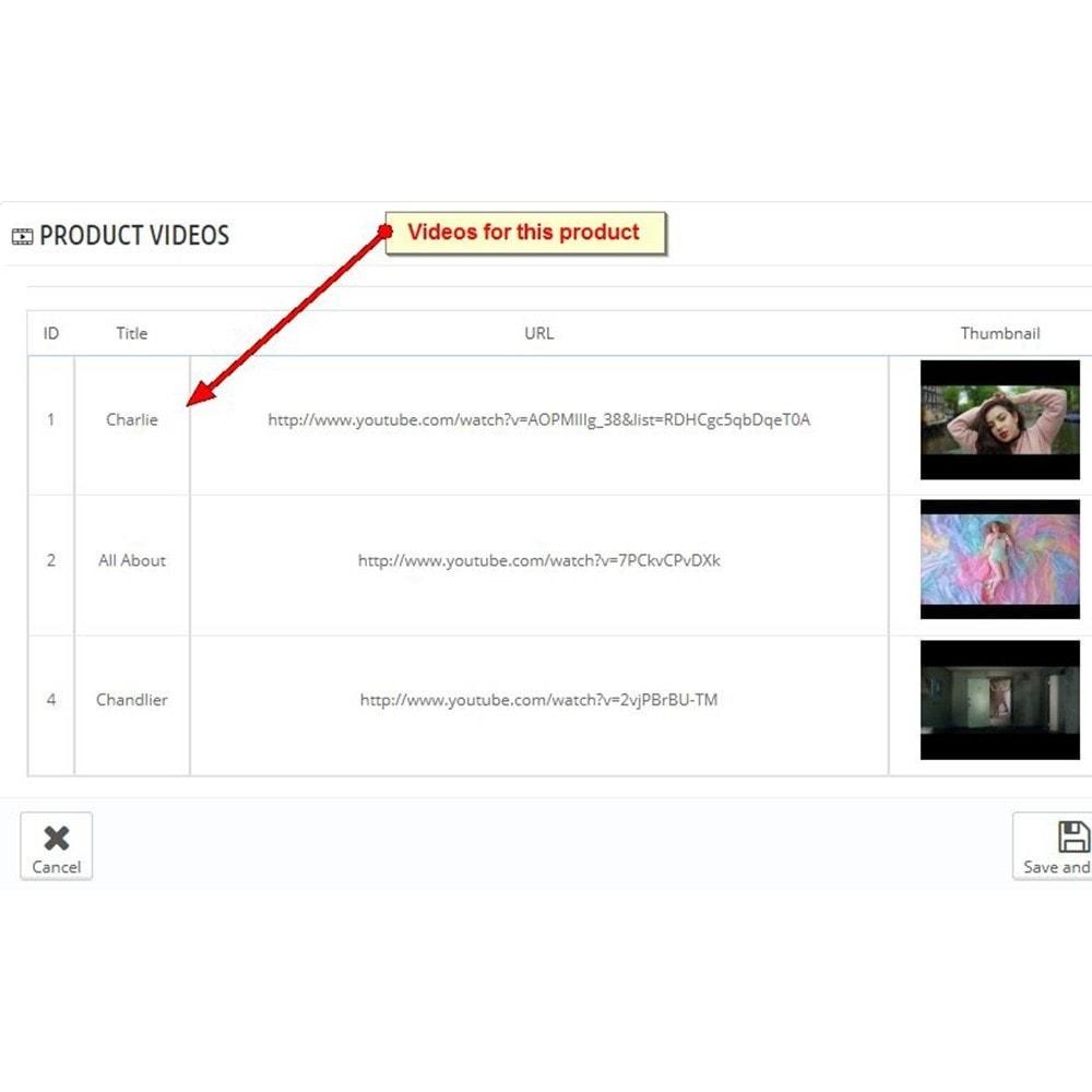 module - Vidéo & Musique - Vidéos du produit Youtube - 2