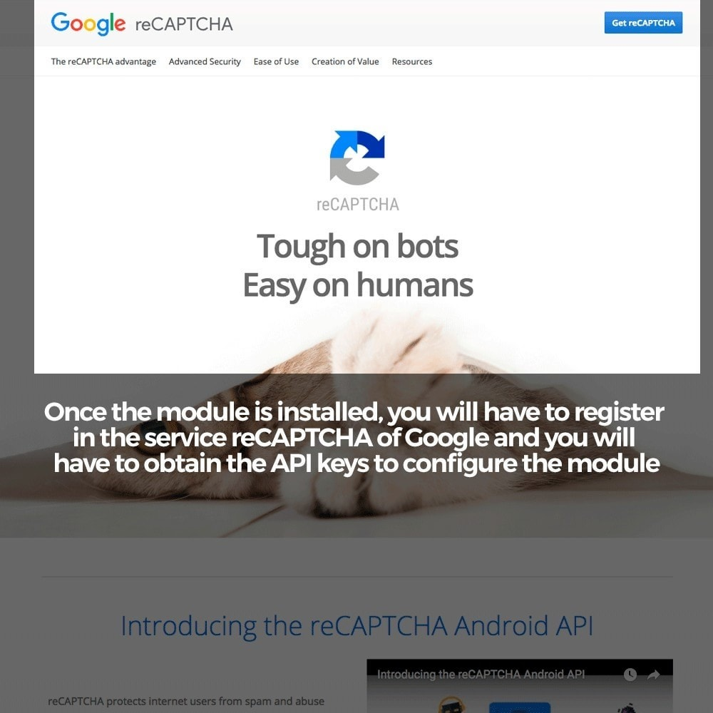 module - Security & Access - Add Google reCAPTCHA to store forms - 3