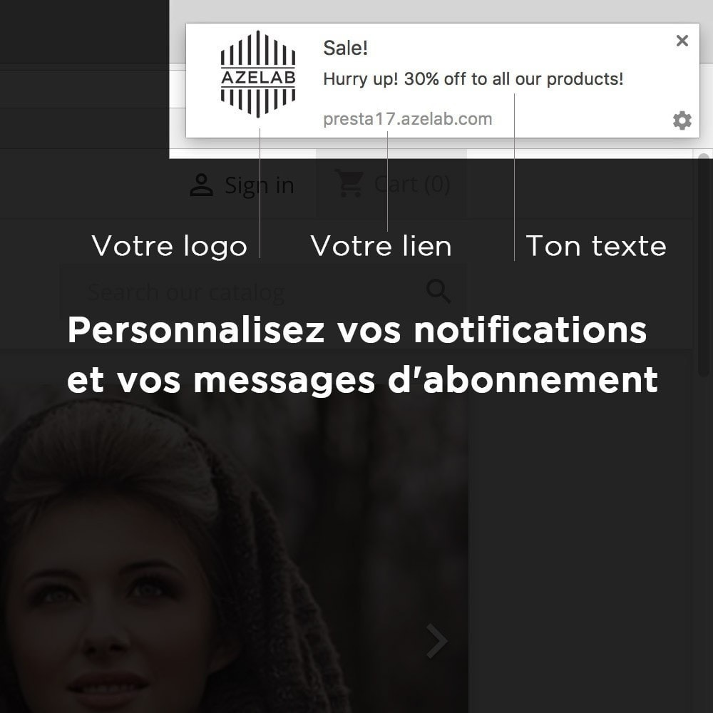 module - E-mails & Notifications - OneSignal - Browser Push Notifications + Cart Reminder - 3