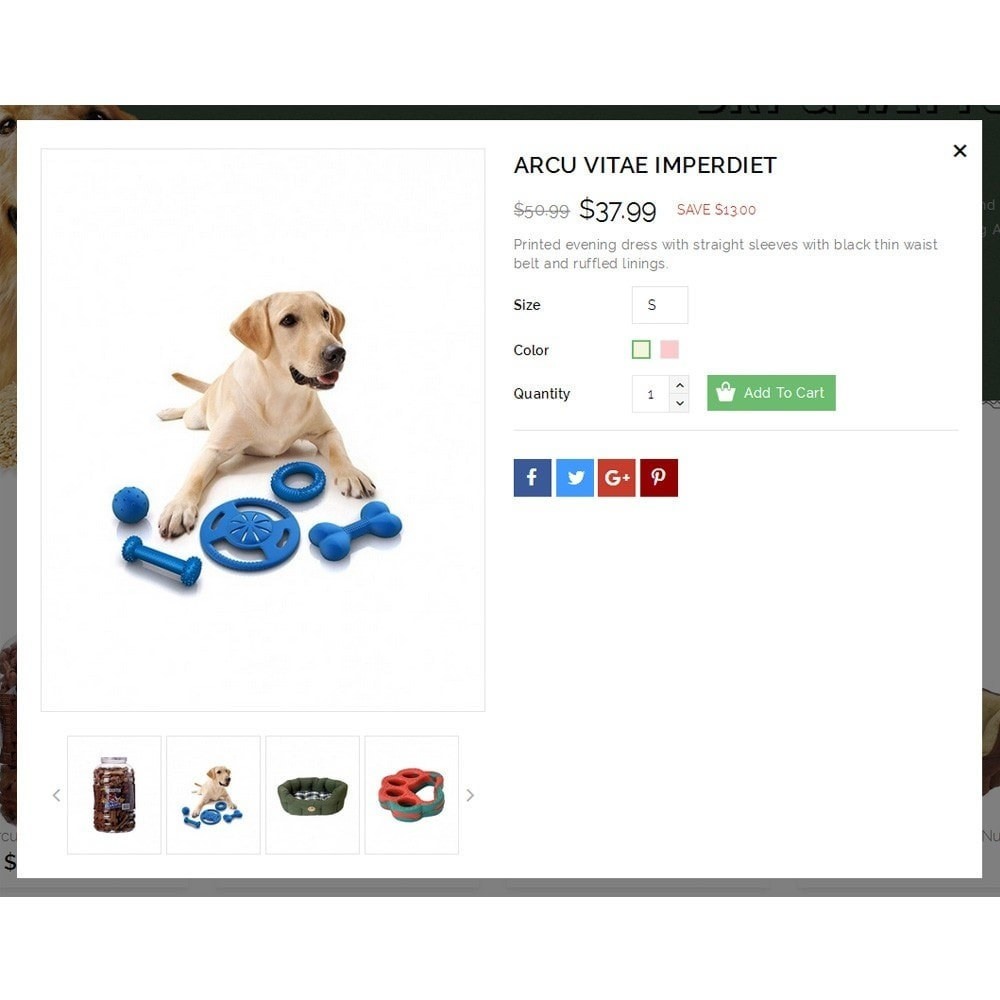 theme - Animais - Dearpets Pet Store - 7