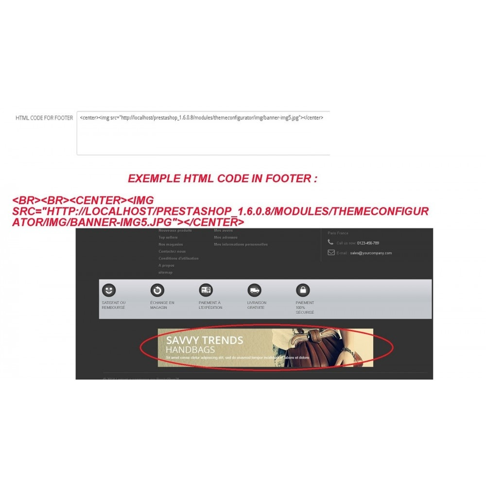 module - Page Customization - INSERT HTML CODE - 3