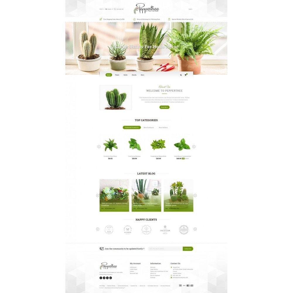 Peppertree - Garden Plants Store
