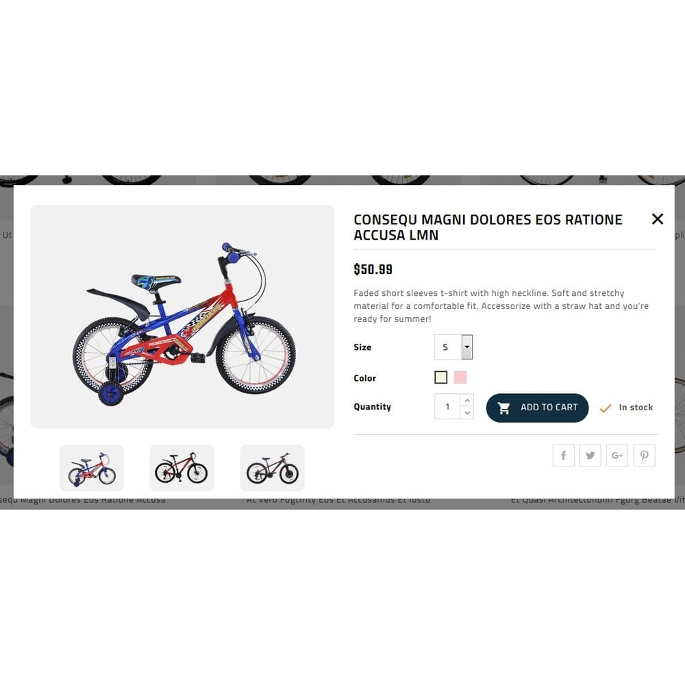theme - Auto's & Motoren - Spo Bicycle Store - 7