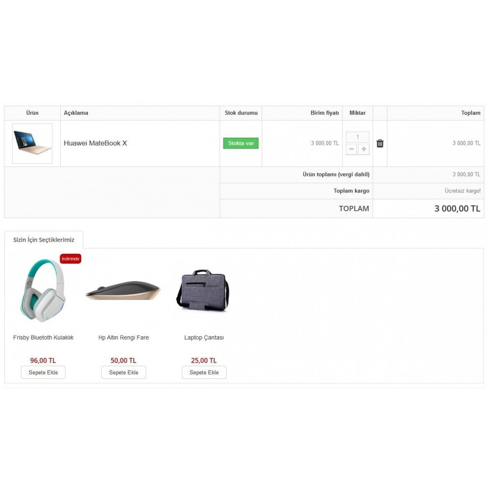 module - Additional Information & Product Tab - Extra Product Module In Cart - 1