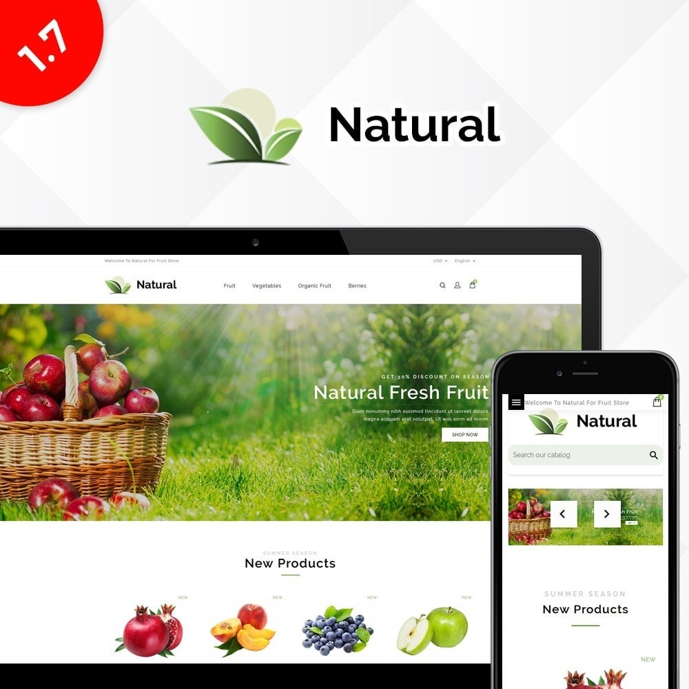 theme - Продовольствие и рестораны - Natural Fruit Store - 1