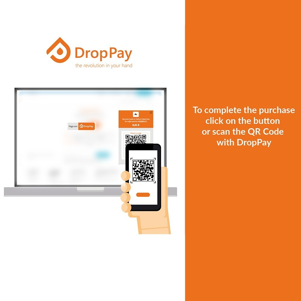 module - Other Payment Methods - DropPay - 3
