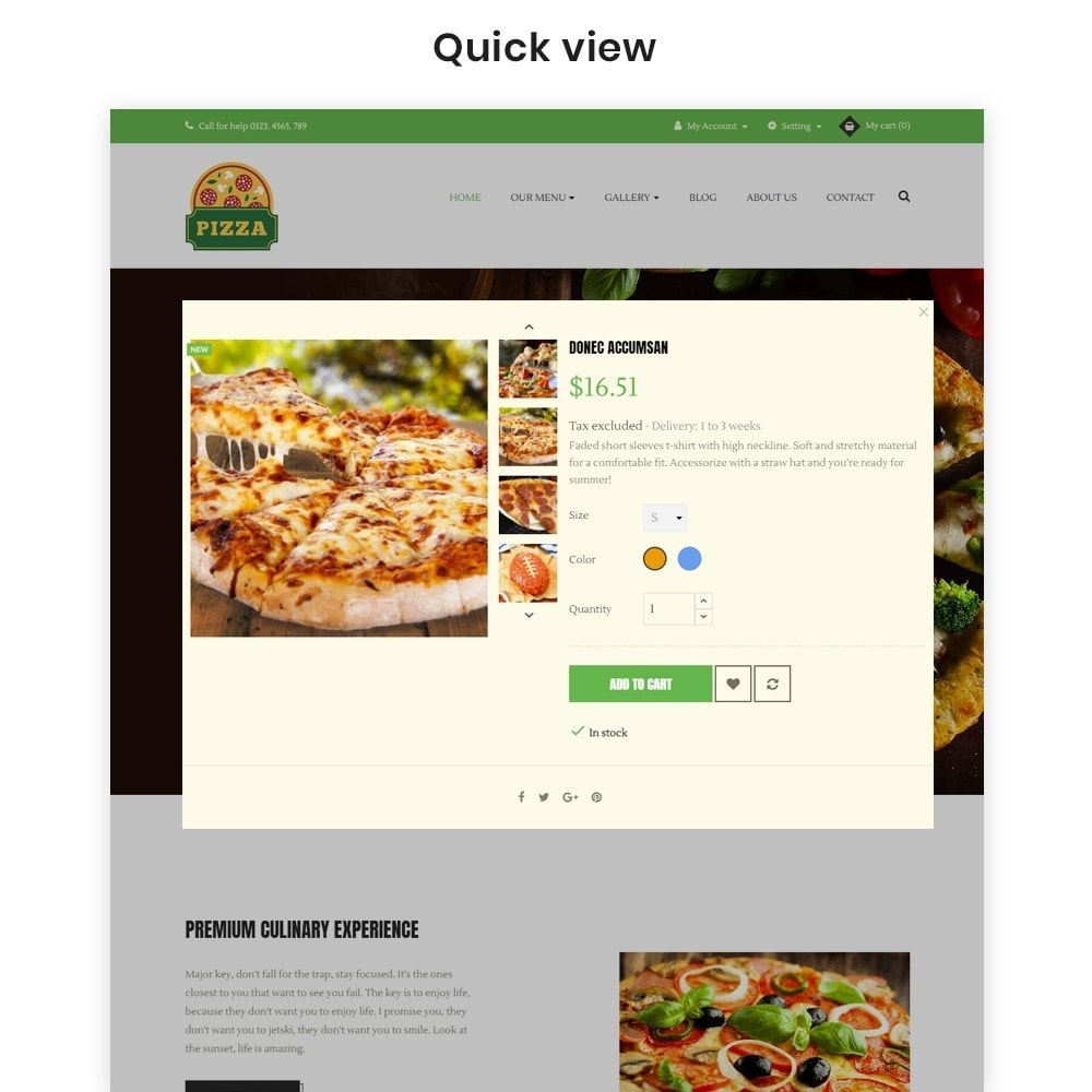 theme - Alimentation & Restauration - Ap Pizza - 6