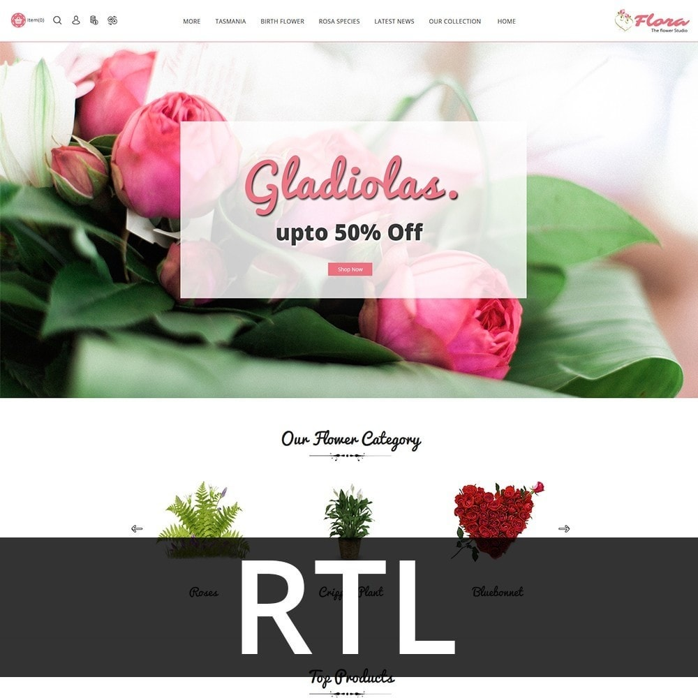 theme - Regali, Fiori & Feste - Flora Flower Shop - 3