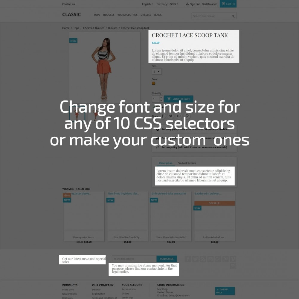 module - Page Customization - AN Google Fonts - 3