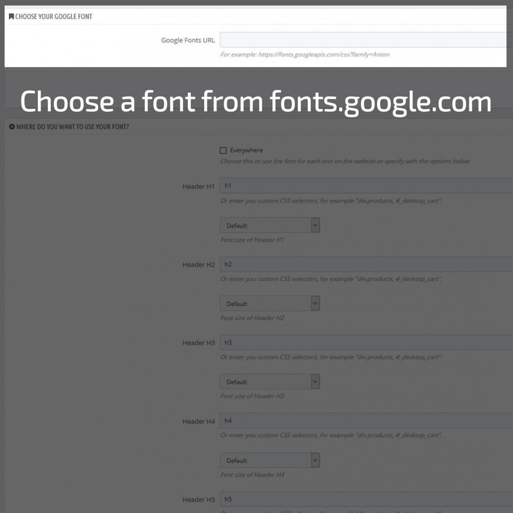 module - Page Customization - AN Google Fonts - 4