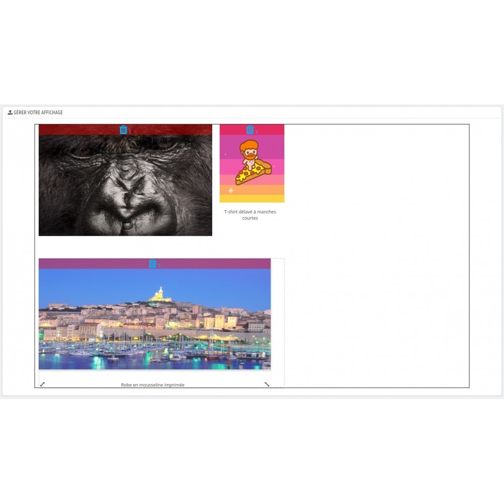module - Visuels des produits - Grille Image Facile - 17