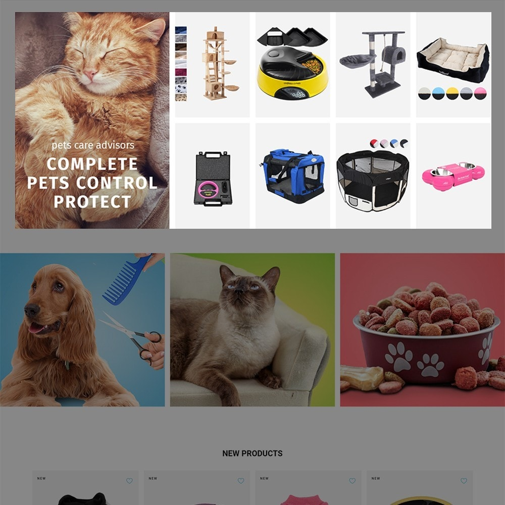 theme - Animaux - Doggo - Pet Shop - 3