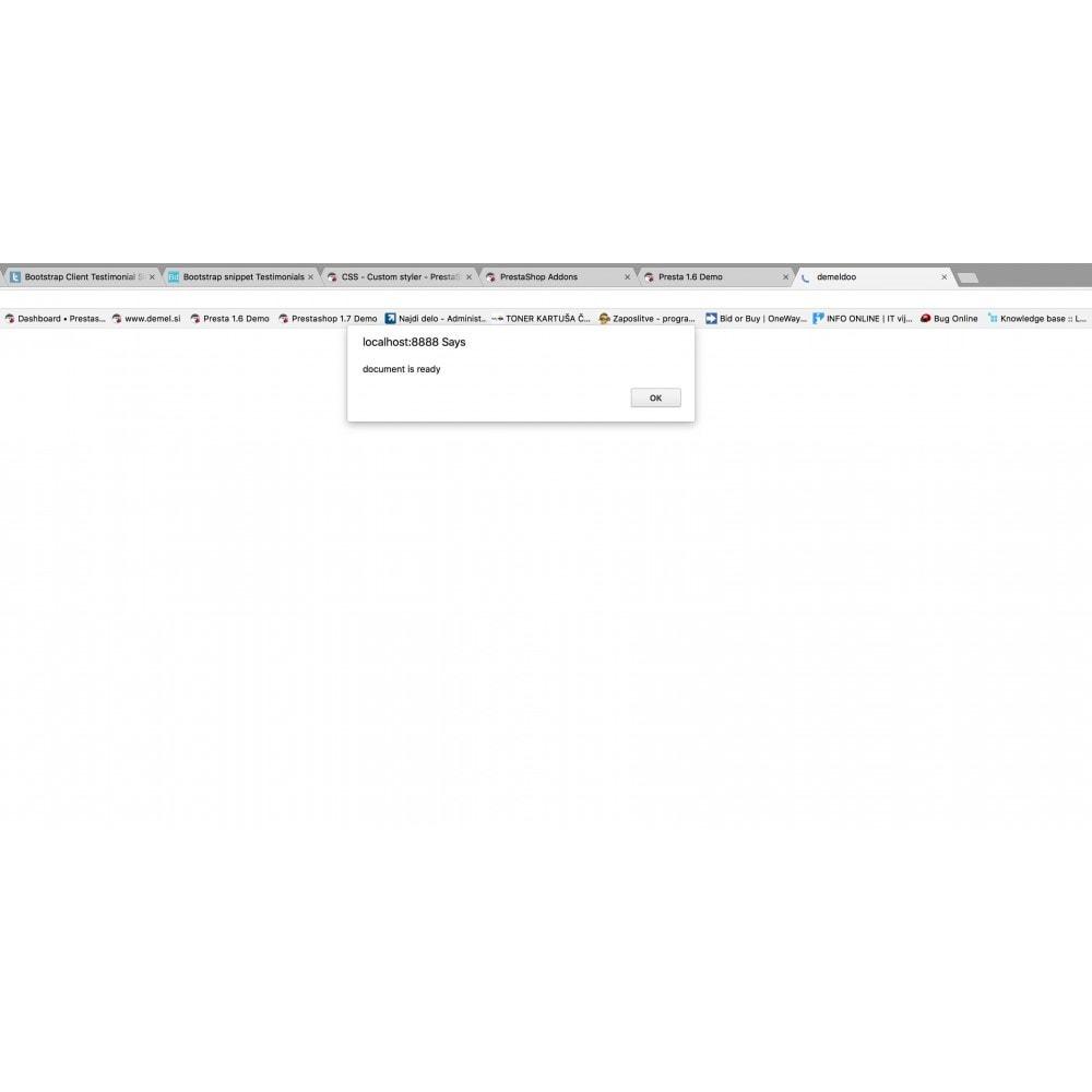 module - Personnalisation de Page - Custom Javascript - 2